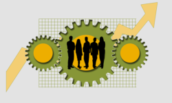 Employee Development Plan Examples Which Can Help the Careers of Employees