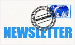 Your Controversial Newsletter